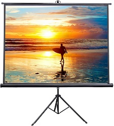 Vivo 100 Inch Portable Indoor-Outdoor Projector Screen